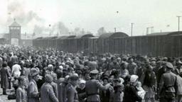 Video-Vortrag: Roma-Widerstand im KZ Auschwitz